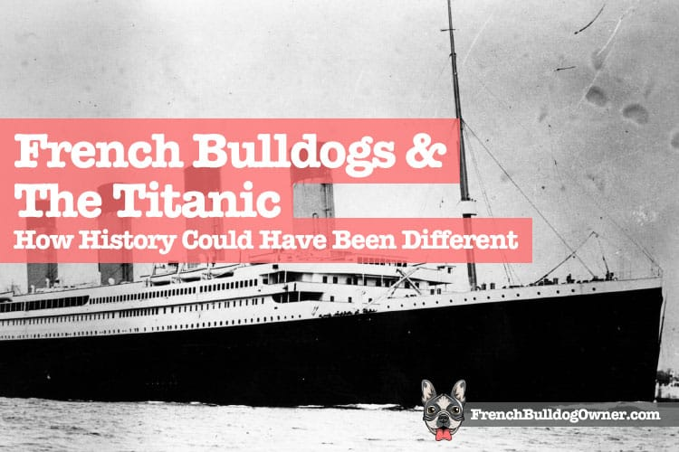 Frenchies and The Titanic