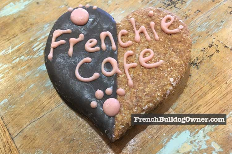 frenchie cafe dog treat