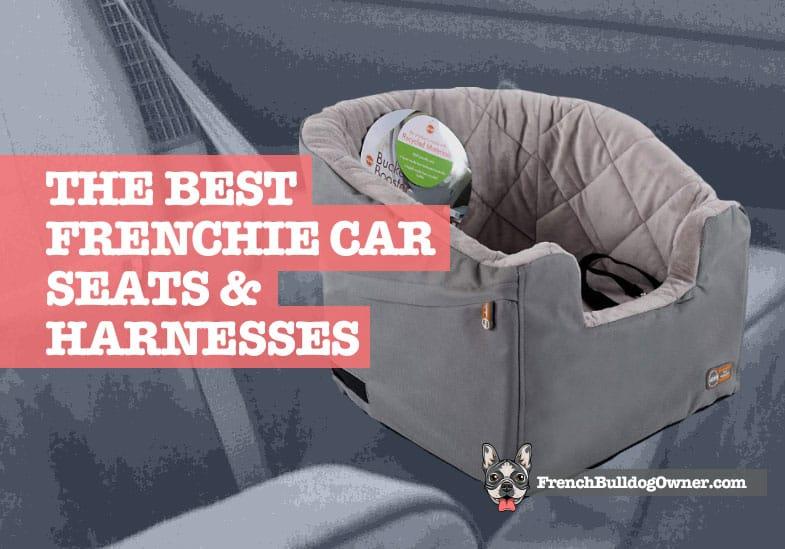 french bulldog car seat